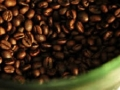Indonesia's Gayo Arabica Coffee Awarded Protected Status by EU